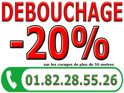 Canalisation Bouchée L etang la Ville 78620